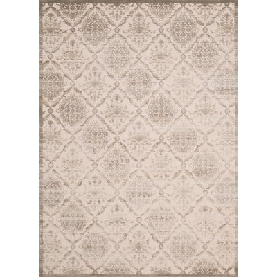 Dais Brown Indoor/Outdoor Area Rug Rug Size: 53 x 72