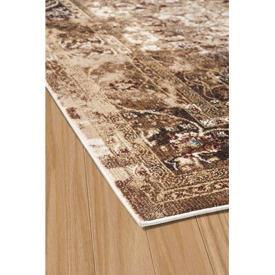 Randers Brown Area Rug Rug Size: 53 x 72