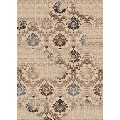 Treasure Cream Area Rug Rug Size: 53 x 77