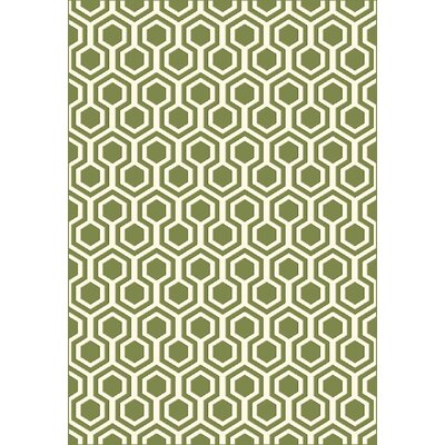Trend Green Geometric Area Rug Rug Size: Rectangle 53 x 77