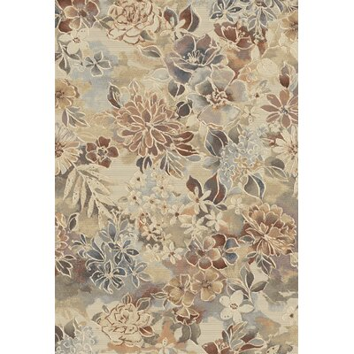 Eclipse Area Rug Rug Size: Rectangle 311 x 57
