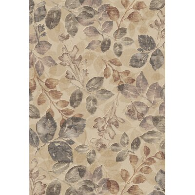 Lois Multi Rug Rug Size: Rectangle 53 x 77