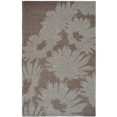 Element Grey Floral Area Rug Rug Size: 5 x 8