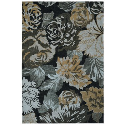 Element Multicolored Area Rug Rug Size: 8 x 11