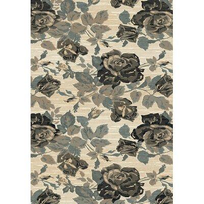 Opus Beige/Grey Floral Area Rug Rug Size: 67 x 96