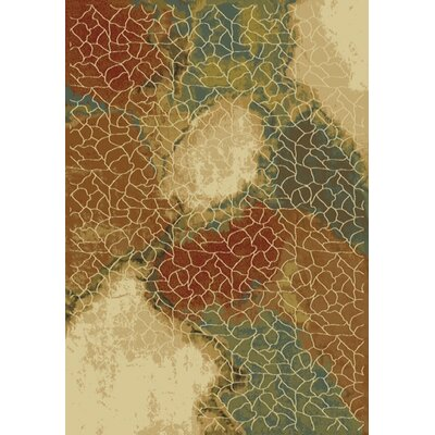 Majestic Area Rug Rug Size: Runner 22 x 77