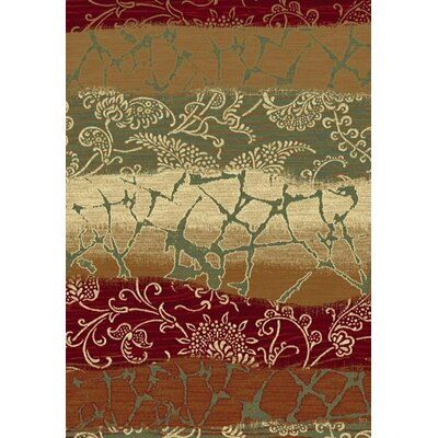 Majestic Area Rug Rug Size: Rectangle 67 x 96