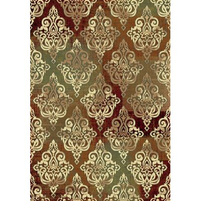 Majestic Area Rug Rug Size: Rectangle 36 x 56