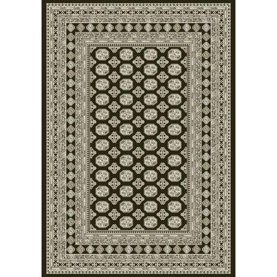 Ancient Garden Charcoal/Silver Area Rug Rug Size: Runner 22 x 11