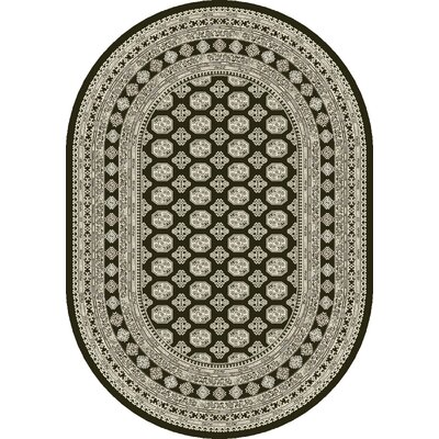 Ancient Garden Charcoal/Silver Area Rug Rug Size: Oval 67 x 96