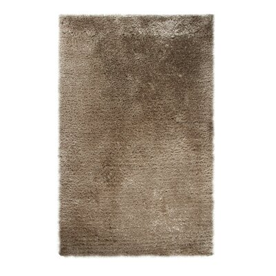 Forte Sand Area Rug Rug Size: Rectangle 8 x 10