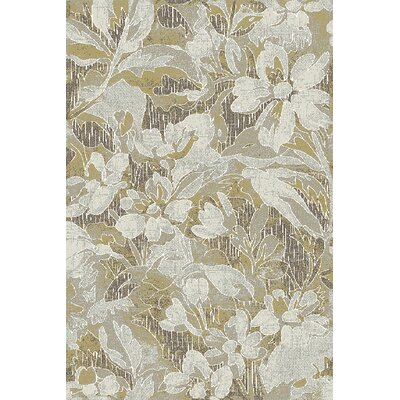 Royal Treasure Gray/Brown Area Rug Rug Size: Runner 22 x 77