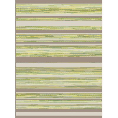 Piazza Green Indoor/Outdoor Area Rug Rug Size: 710 x 1010