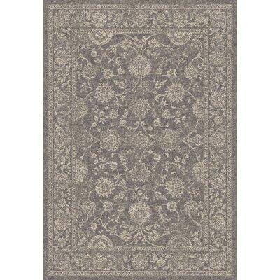 Farahan Dark Gray Area Rug Rug Size: 2' x 3'11