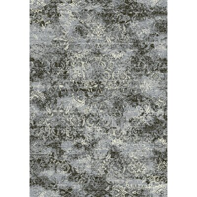Ancient Garden Steel Blue Area Rug Rug Size: Rectangle 53 x 77