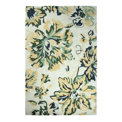 Casual Beige Area Rug Rug Size: Rectangle 36 x 56