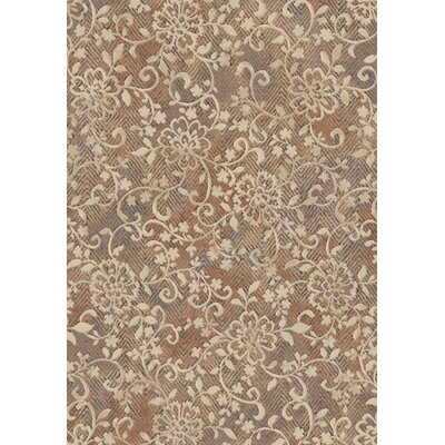 Eclipse Copper Area Rug Rug Size: Rectangle 53 x 77