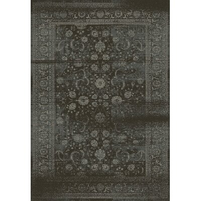 Utopia Antique Gray Area Rug Rug Size: 36 x 56