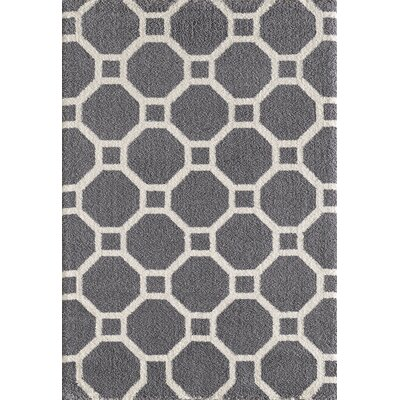 Silky Gray Area Rug Rug Size: Rectangle 67 x 96