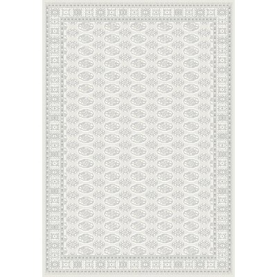 Imperial Gray Area Rug Rug Size: Rectangle 67 x 96