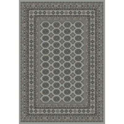 Regal Gray Area Rug Rug Size: 67 x 96