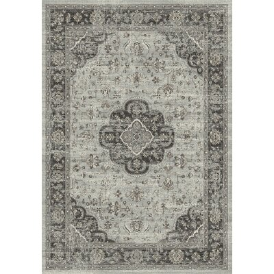 Regal Light Gray Area Rug Rug Size: Rectangle 36 x 56