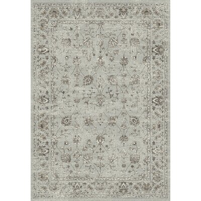 Carnbore Light Gray Area Rug Rug Size: Rectangle 53 x 77