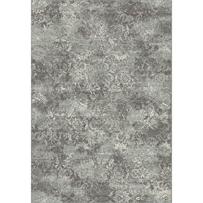 Regal Gray Area Rug Rug Size: Rectangle 53 x 77