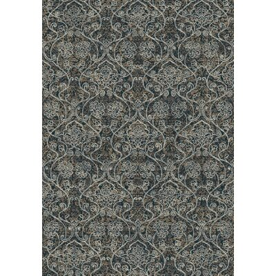 Regal Gray Area Rug Rug Size: 53 x 77