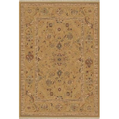 Satin Walker Champagne Rug Rug Size: Rectangle 53 x 77