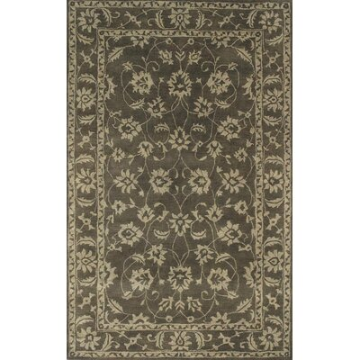 Charisma Manor Dark Olive / Beige Area Rug Rug Size: Rectangle 4 x 6
