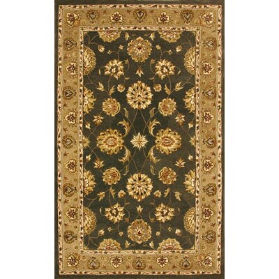 Jewel Green/Dark Linen Rug Rug Size: 67 x 96