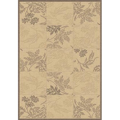 Piazza Brentwood Natural/Brown Indoor/Outdoor Area Rug Rug Size: 53 x 77