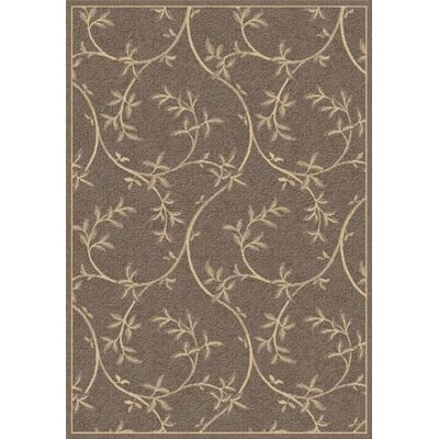 Piazza Banbury Brown Indoor/Outdoor Area Rug
