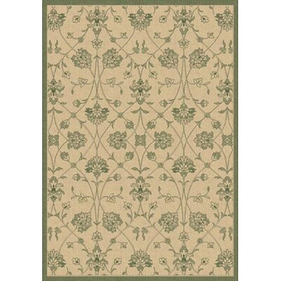Piazza Natural/Green Indoor/Outdoor Rug Rug Size: 53 x 77