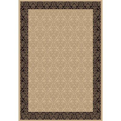 Radiance Rug Rug Size: Rectangle 67 x 96
