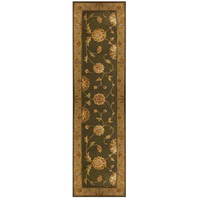 Jewel Green/Dark Linen Rug Rug Size: Runner 22 x 8