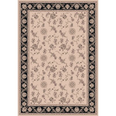 Legacy Ivory/Black Rug Rug Size: Rectangle 67 x 96