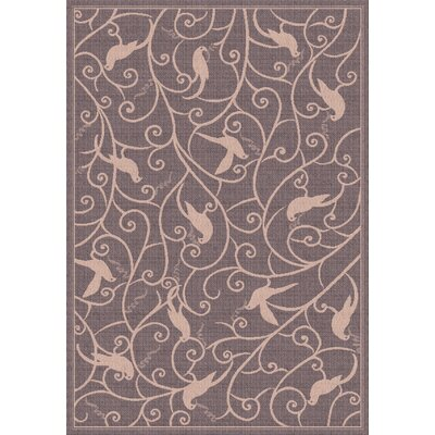 Piazza Brown Rug Rug Size: 311 x 57