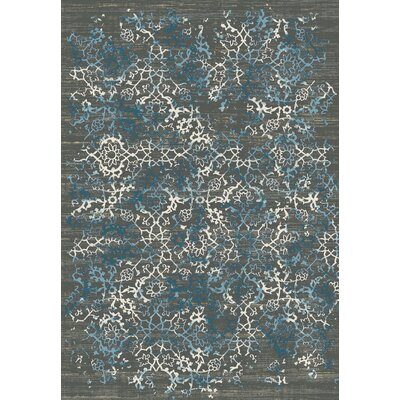 Kingston Dark Grey Area Rug Rug Size: 5'3