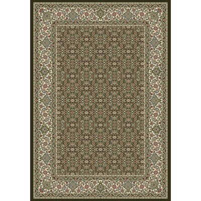 Ancient Garden Black Area Rug Rug Size: Rectangle 53 x 77