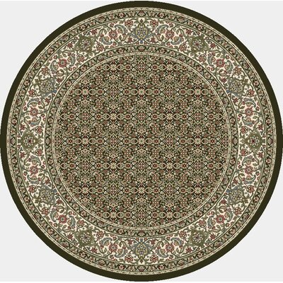 Ancient Garden Black Area Rug Rug Size: Round 710