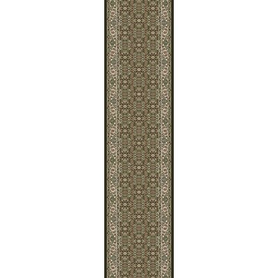 Ancient Garden Black Area Rug Rug Size: Runner 22 x 11