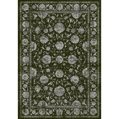Ancient Garden Charcoal/Silver Area Rug Rug Size: Rectangle 53 x 77