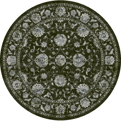 Ancient Garden Charcoal/Silver Area Rug Rug Size: Round 53