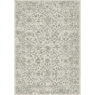 Ancient Garden Area Rug Rug Size: Rectangle 67 x 96