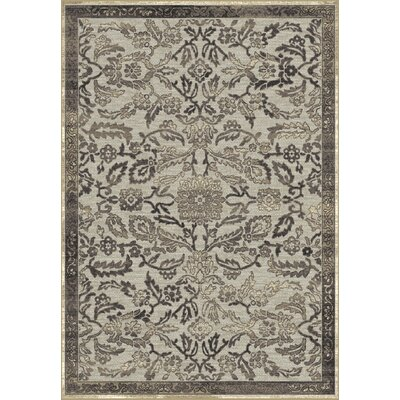 Genova Gray Area Rug Rug Size: Rectangle 53 x 77