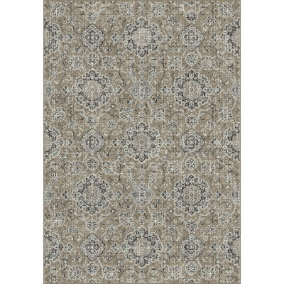 Regal Taupe/Gray Area Rug Rug Size: 36 x 56