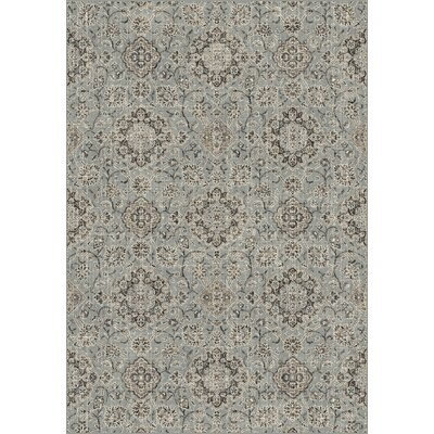 Carnbore Silver/Blue Area Rug Rug Size: Rectangle 67 x 96
