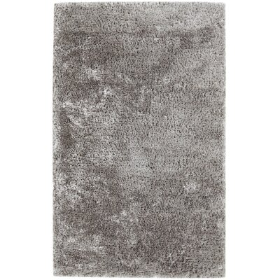 Timeless Light Petroro Area Rug Rug Size: 10 x 14